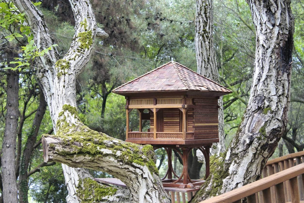 alojamiento inusual en la casa del árbol